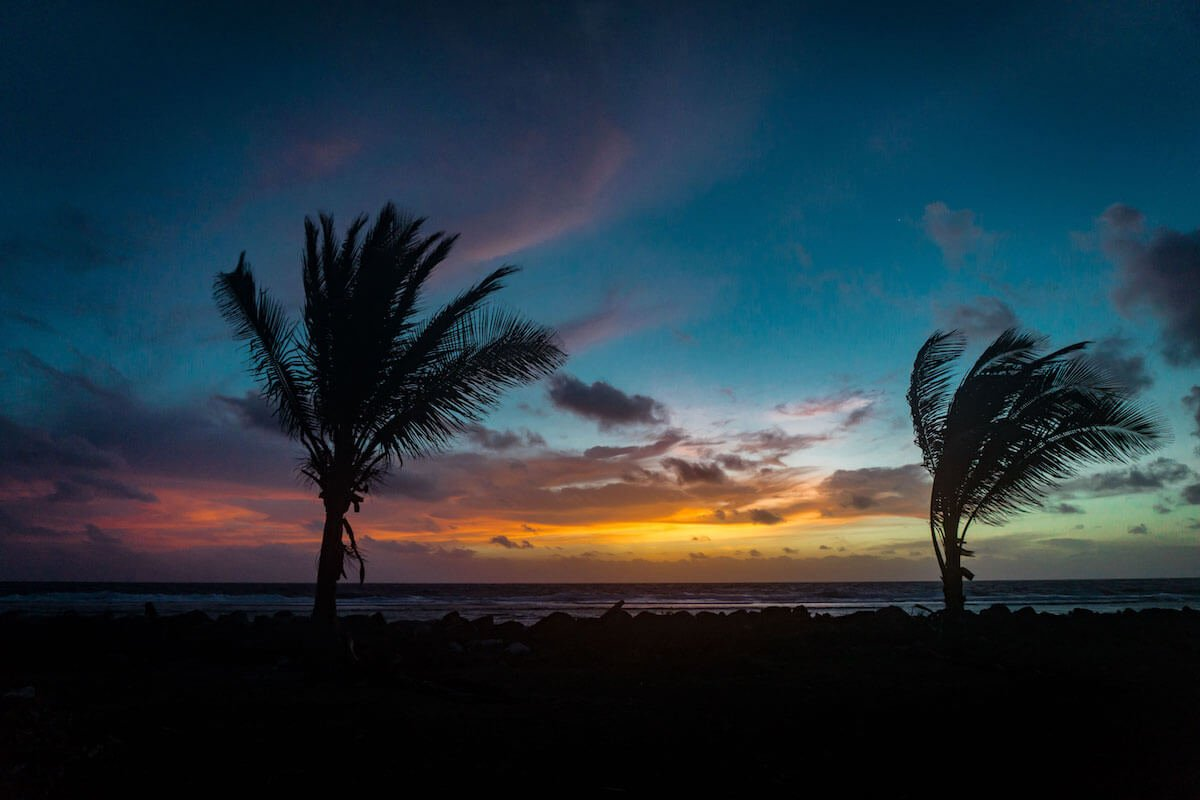 Palm tress sunrise on the Marshall Islands